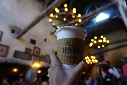 The Wizarding World of Harry Potter at Universal Studios Orlando Florida - mikialamode.com